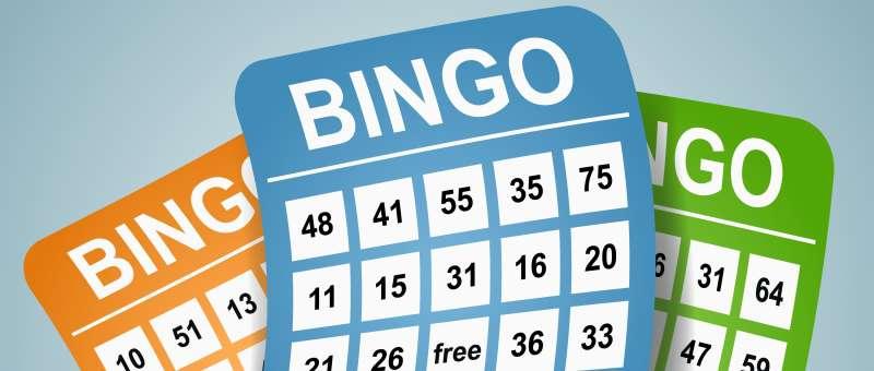 bingo is leuk